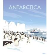 Póster Antártica Grande